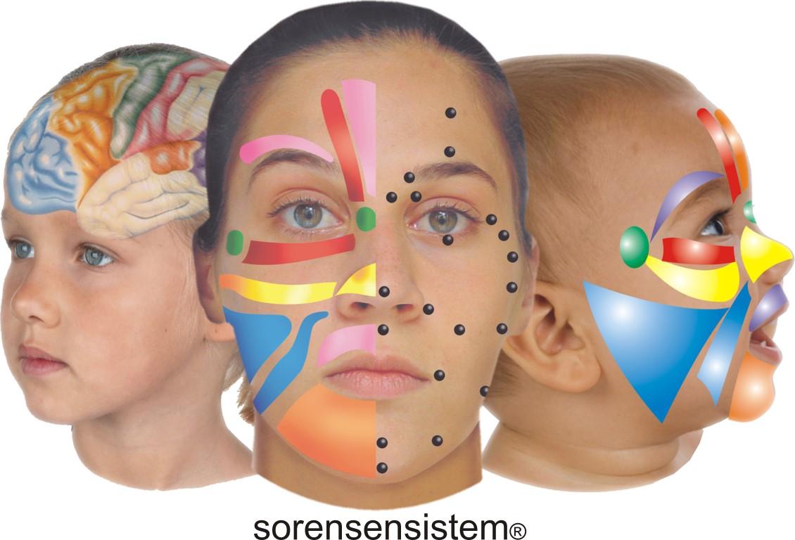 reflexologie gezichtsreflexologie Lone Sorensen Lisette Tiggelaven